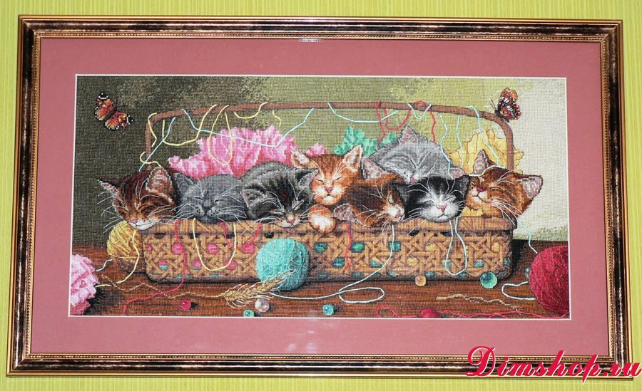 Вышивка котят dimensions