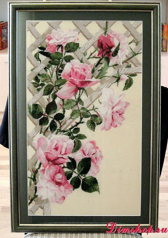 Розы схема вышивки риолис