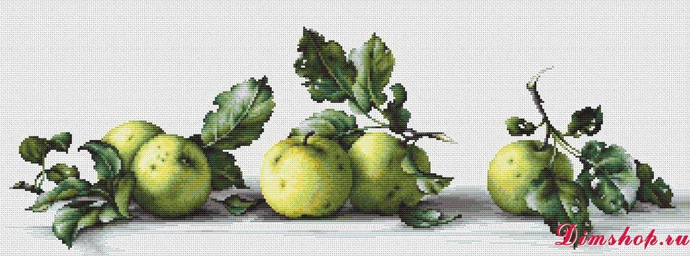 B2259 Яблоки
