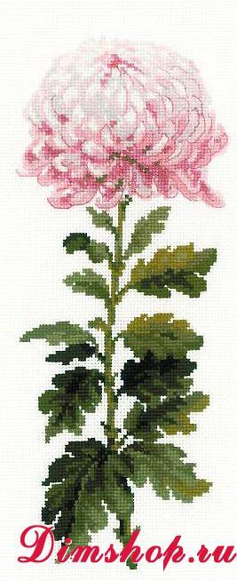 Компания цветок